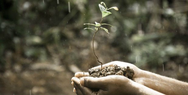 Mark's Musings – Reaching With Intention For Growth